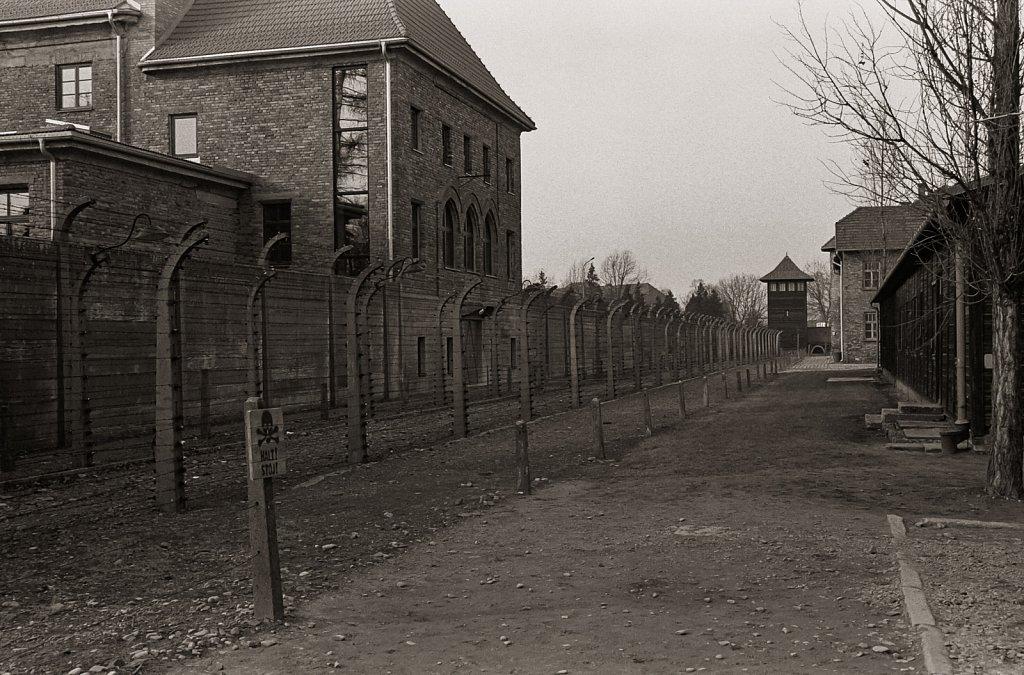 Auschwitz, Jan 2020
